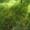 продам дачу в нижние сады #1610162