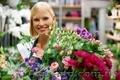 УЦ«Твой успех» рад пригласить Вас на курс флористики!