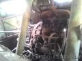 Продаем колесный кран КС-4361А Юргинец, 16 тонн, 1978 г.в. - Изображение #10, Объявление #1636605