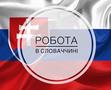 Легальное трудоустройство в Словакии по биометрии и на ВНЖ